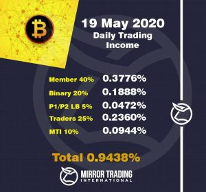 Mirror Trading International - Trading Report
